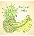Sketch bananas and pineapple in vintage style vector