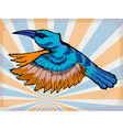 Background with hummingbird vector