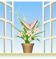 Butterfly and window plant vector