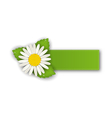 Label or offer sticker with flower daisy isolated vector