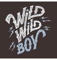 Wild wild boy hand-lettering t-shirt vector
