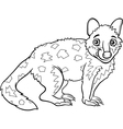Tiger quoll animal coloring book vector