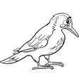 Yaffle bird animal coloring page vector