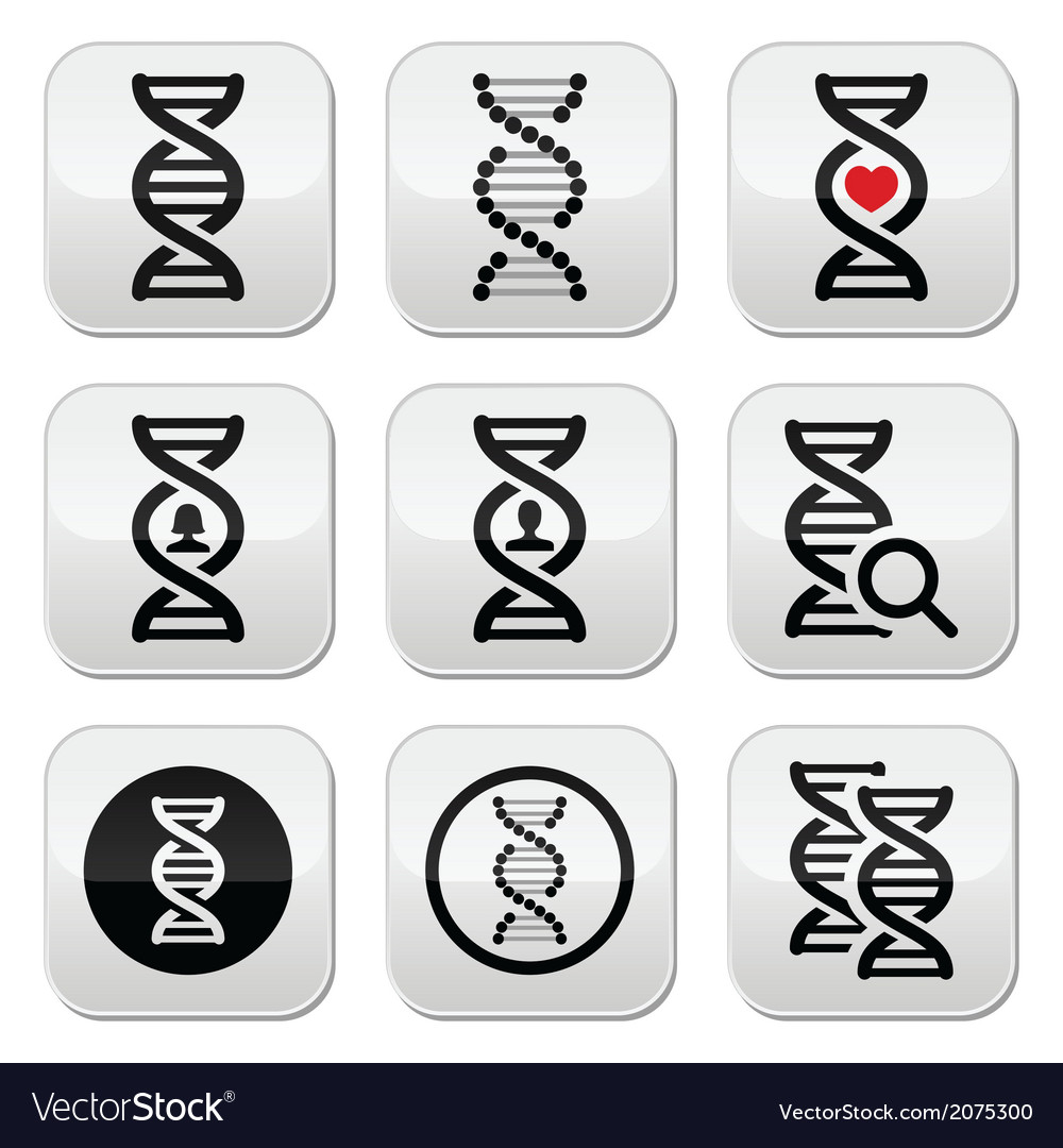 Dna genetics buttons set vector | Price: 1 Credit (USD $1)