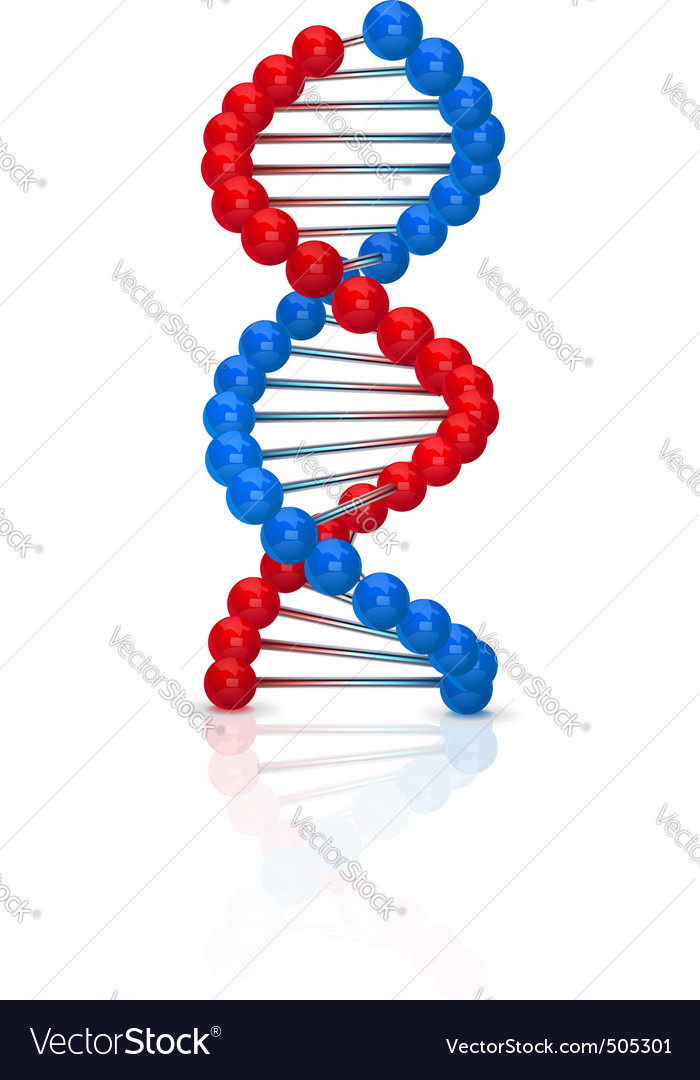 Dna illustration vector | Price: 3 Credit (USD $3)