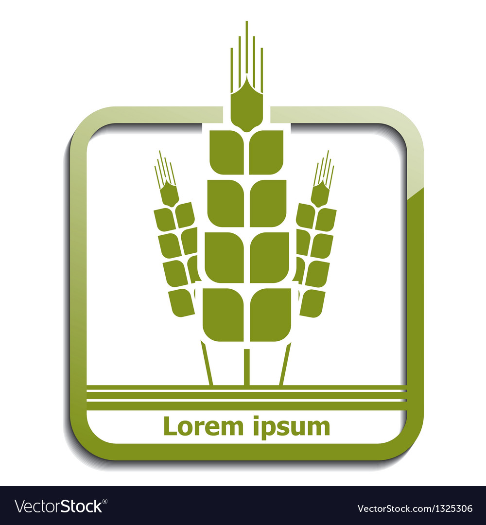 Agricultural wheat icon vector | Price: 1 Credit (USD $1)