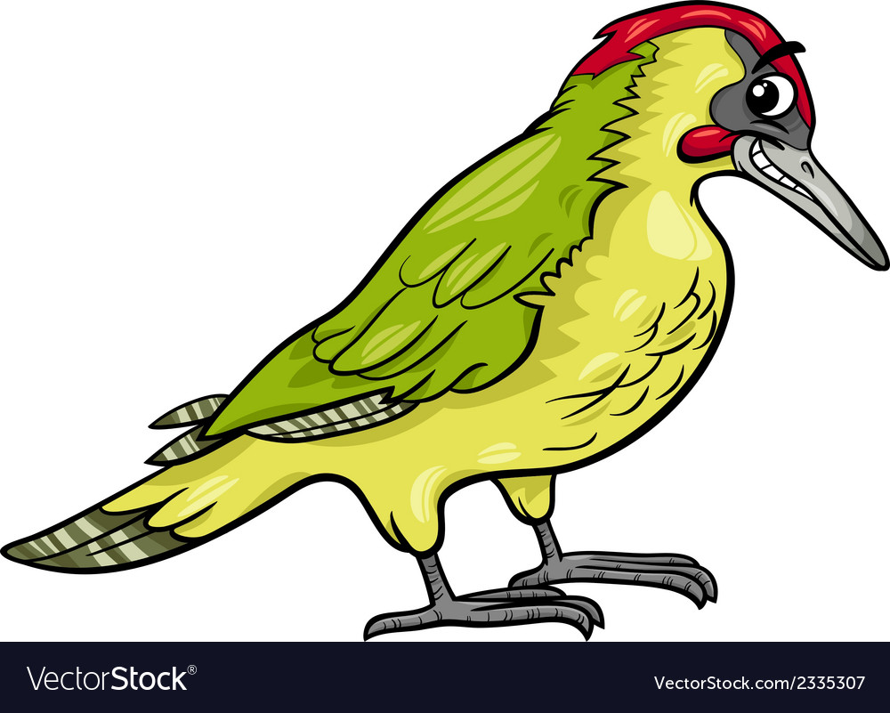 Yaffle bird animal cartoon vector | Price: 1 Credit (USD $1)