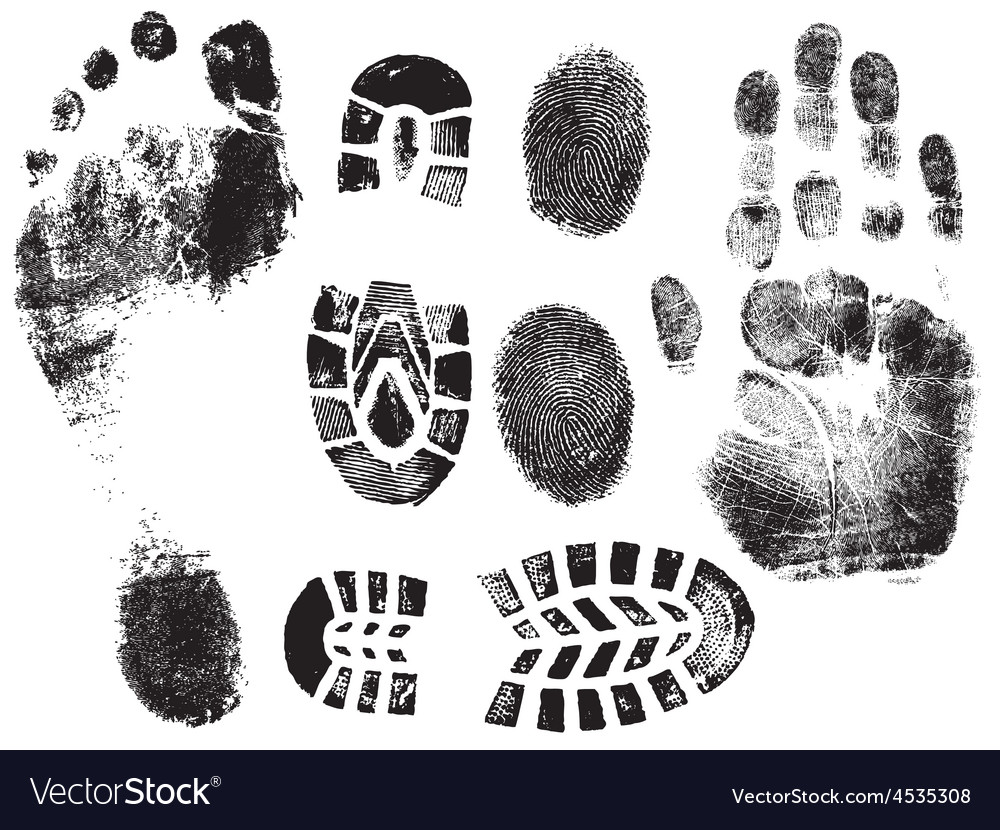 A selection of highly detailed hand finger feet an vector | Price: 1 Credit (USD $1)