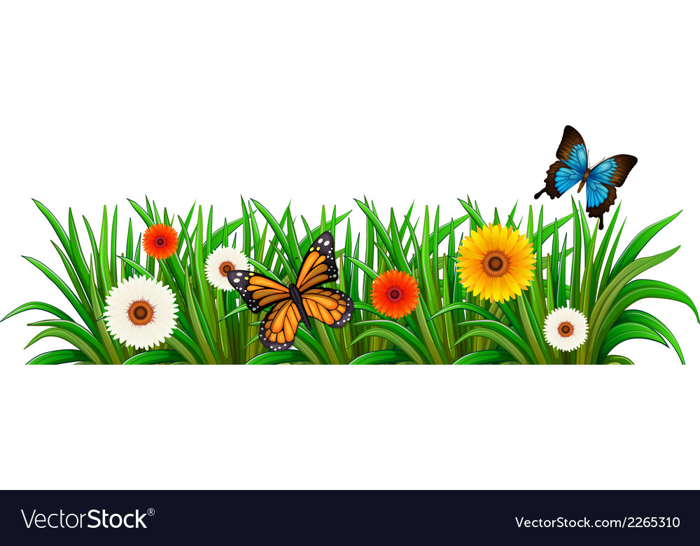 A garden with blooming flowers and butterflies vector | Price: 1 Credit (USD $1)