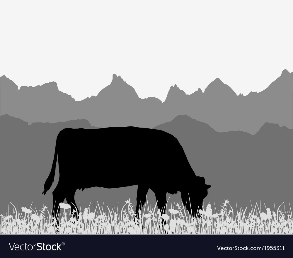 Cow in the alpine meadow vector | Price: 1 Credit (USD $1)