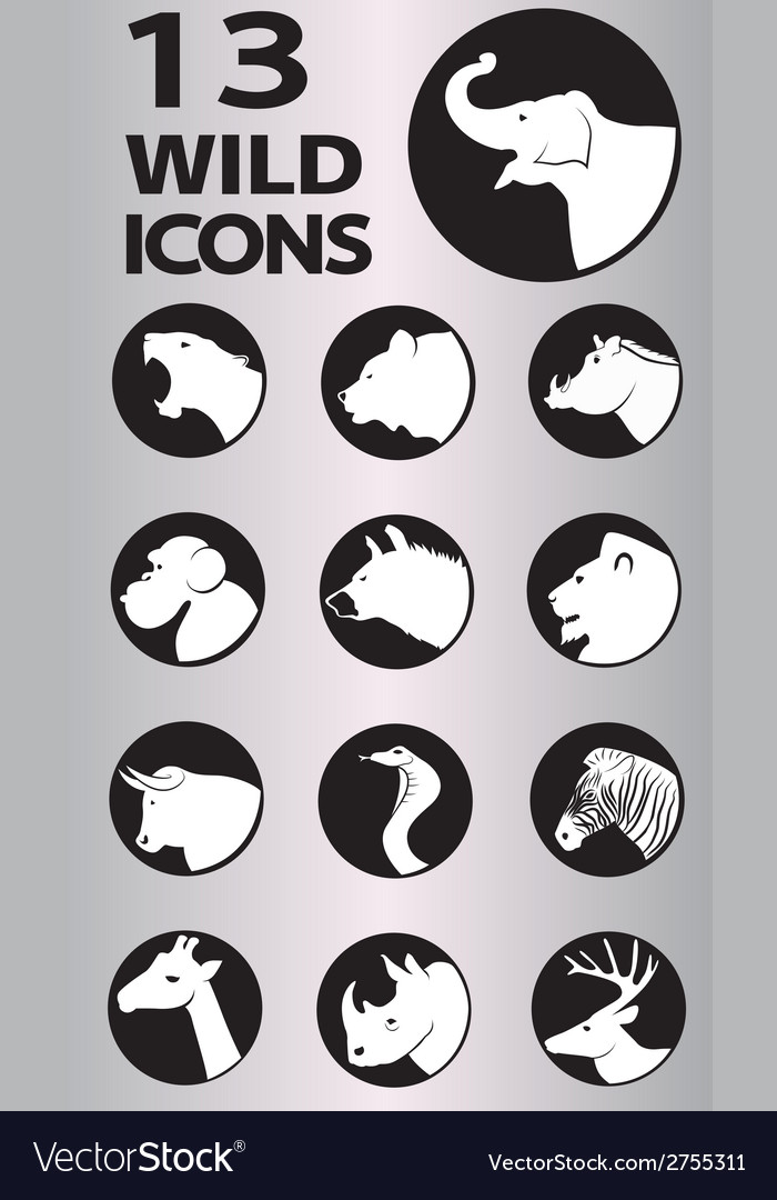 Icon wild vector | Price: 1 Credit (USD $1)