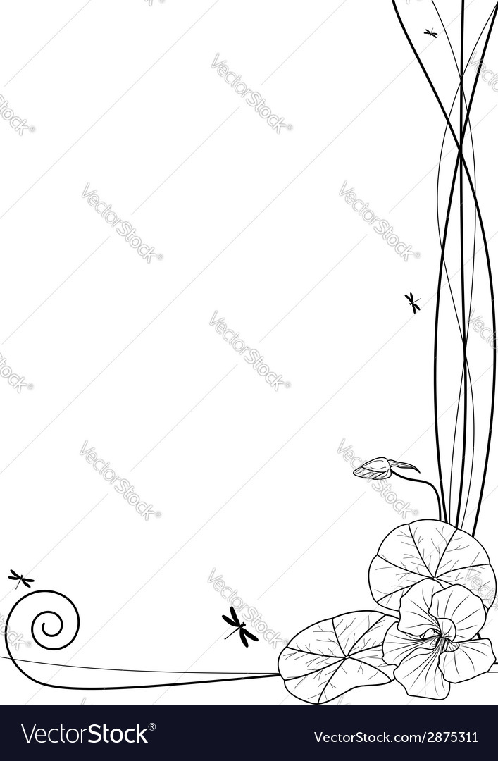 Nasturtium and dragonflies vector