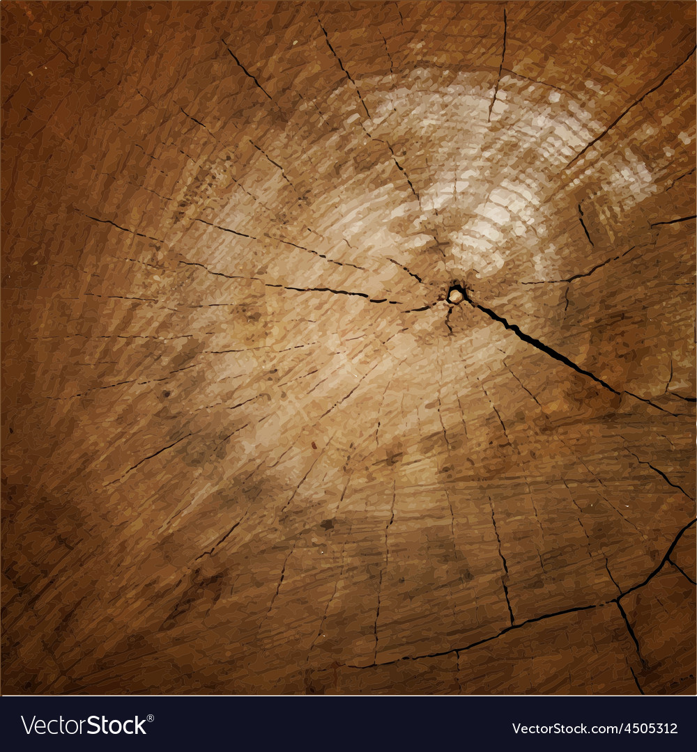 Wood texture tree rings sawing wood vector | Price: 1 Credit (USD $1)