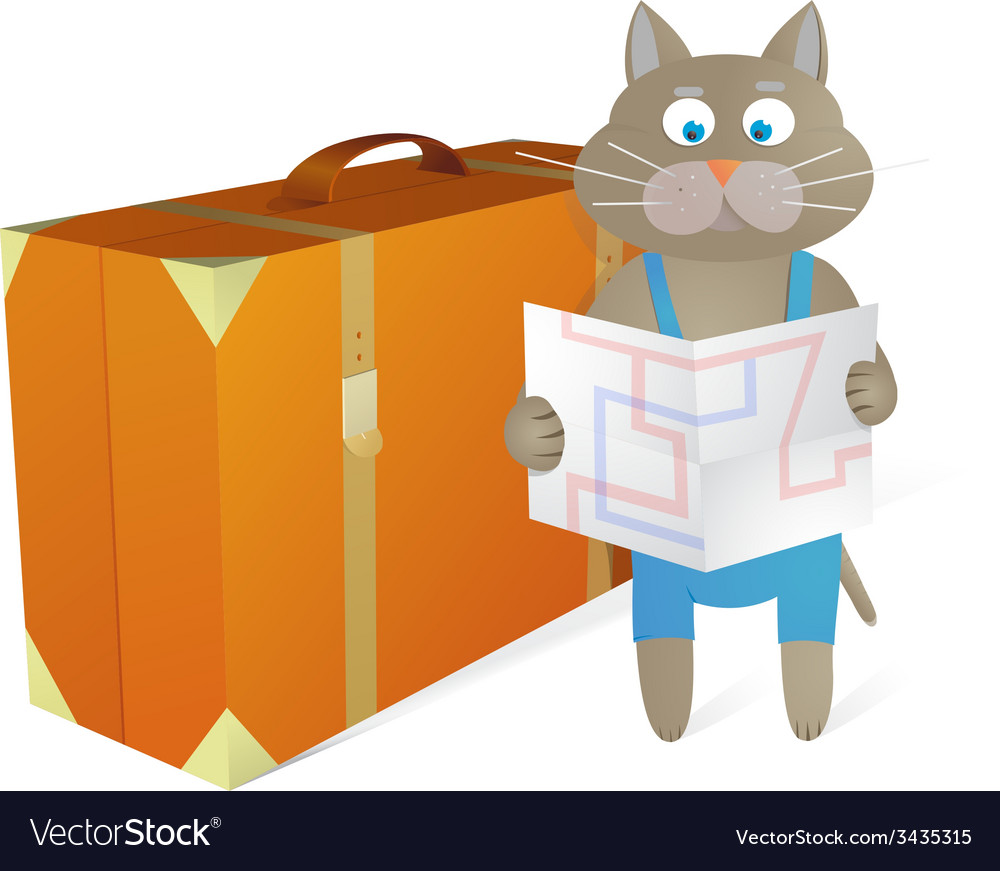 Cartoon cat traveling at vacations vector | Price: 1 Credit (USD $1)