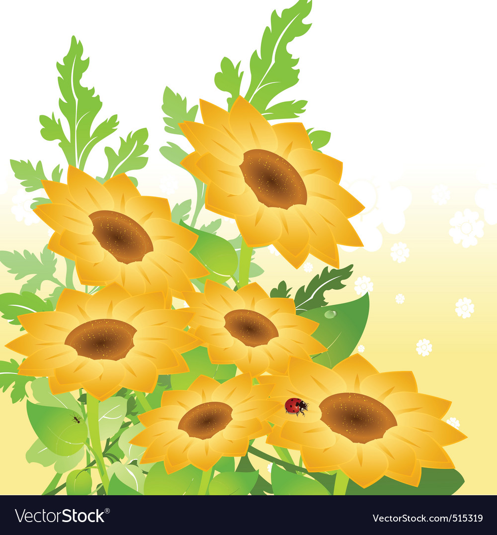 Yellow sunflowers vector | Price: 1 Credit (USD $1)