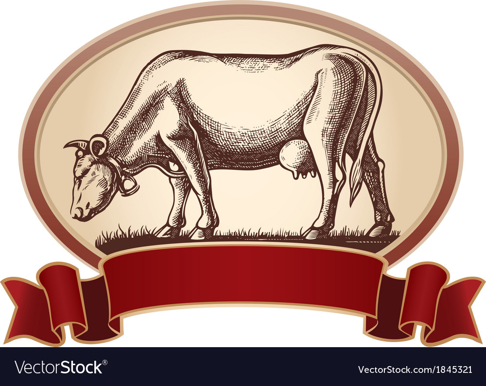 Graphical cow vector | Price: 1 Credit (USD $1)