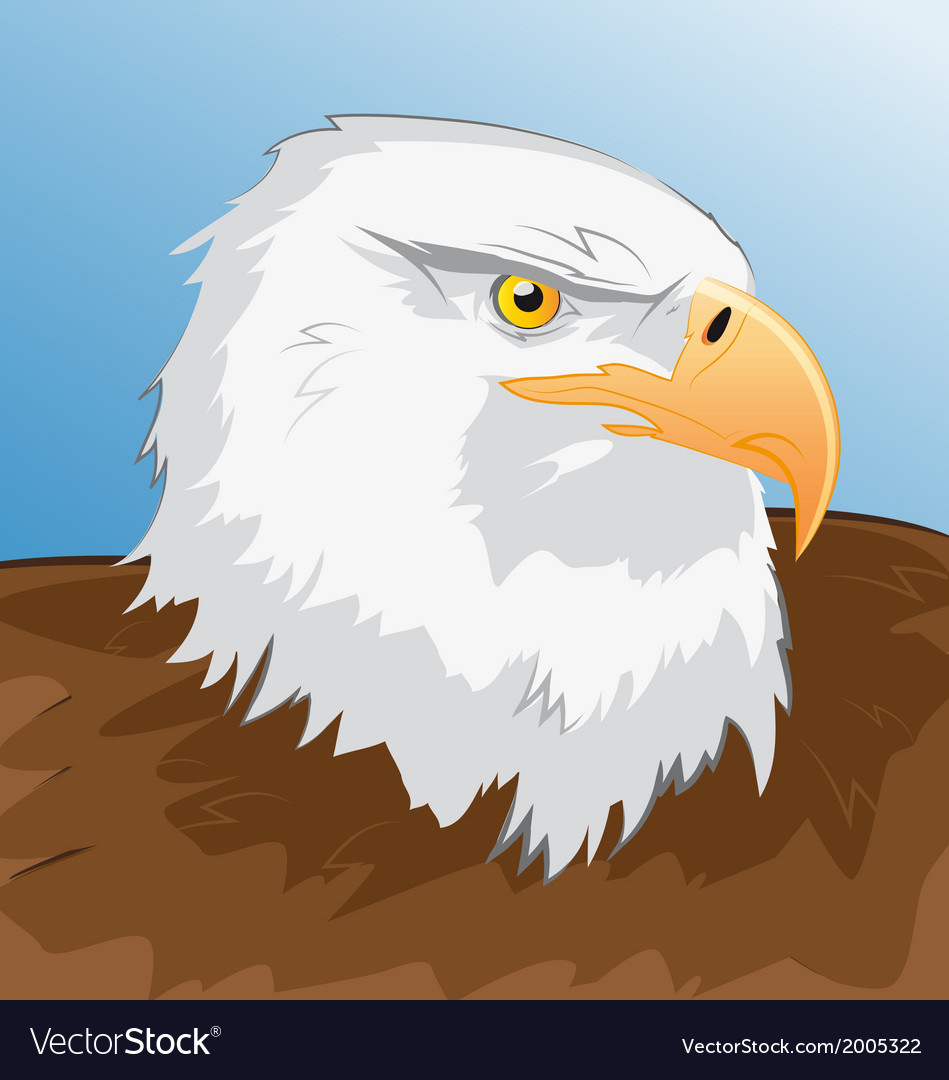 Sea eagle vector | Price: 1 Credit (USD $1)