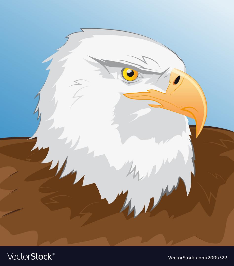Sea eagle vector | Price: 1 Credit (USD $1)