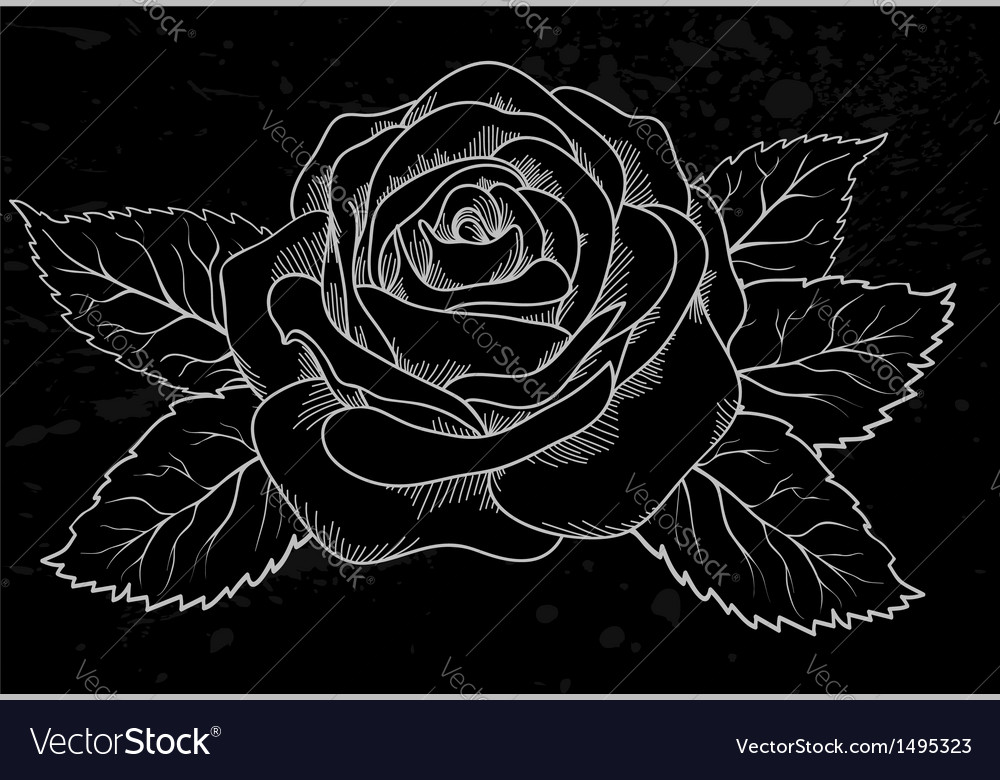 White rose outline gray spots black background vector | Price: 1 Credit (USD $1)