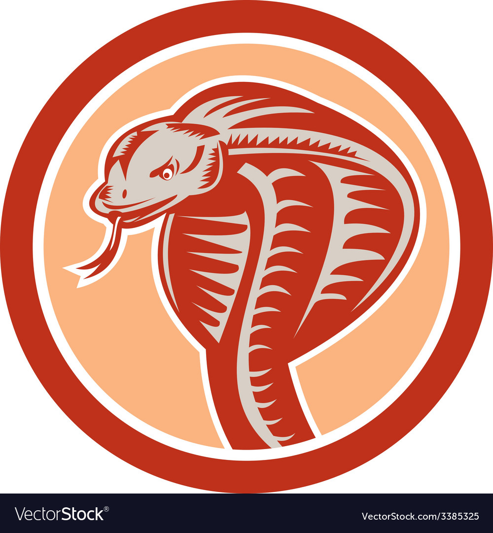 Cobra viper snake head circle retro vector | Price: 1 Credit (USD $1)