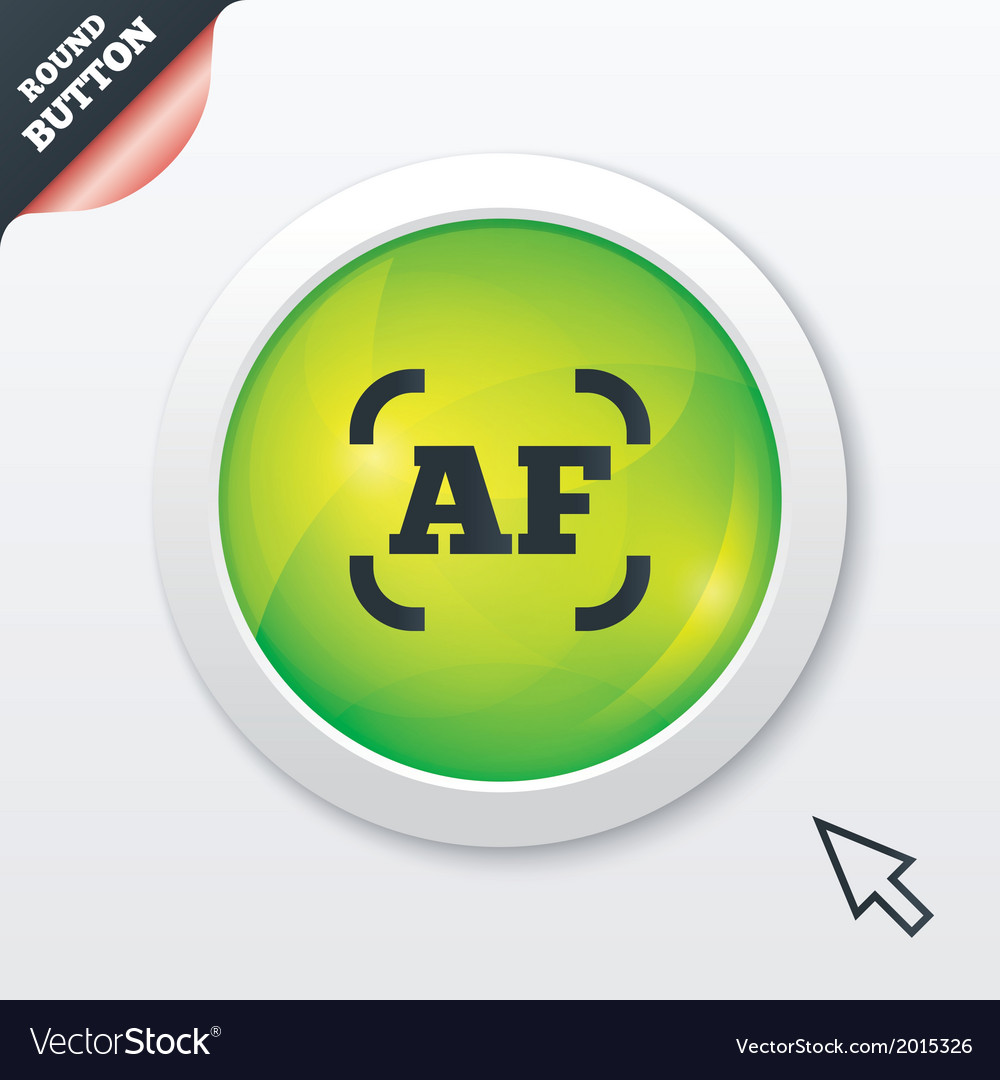 Autofocus photo camera sign icon af settings vector   Price: 1 Credit (USD $1)
