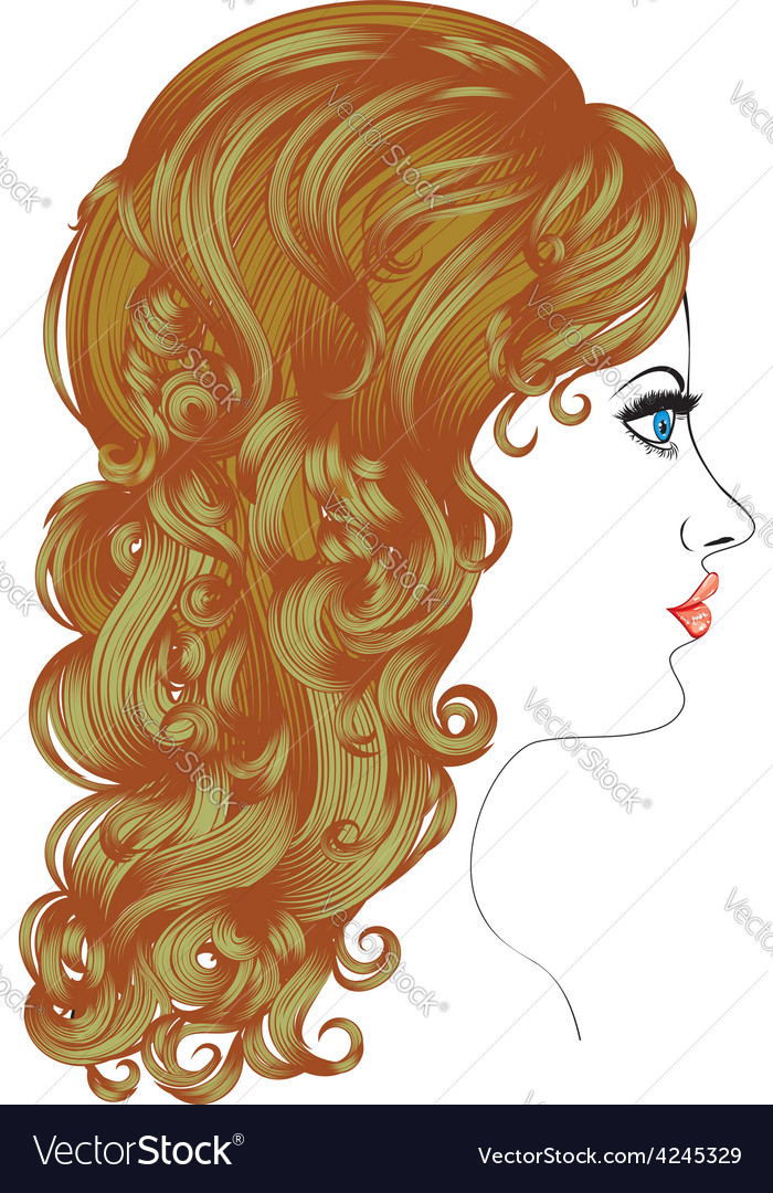 Curly hairstyle vector | Price: 1 Credit (USD $1)