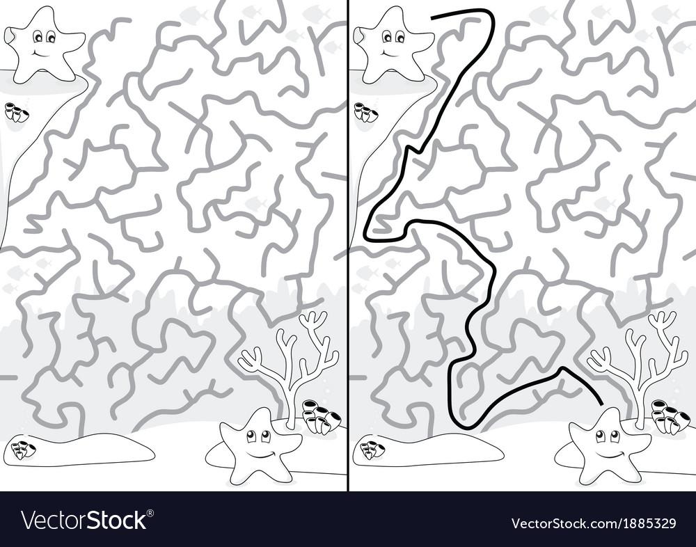 Starfish maze vector | Price: 1 Credit (USD $1)