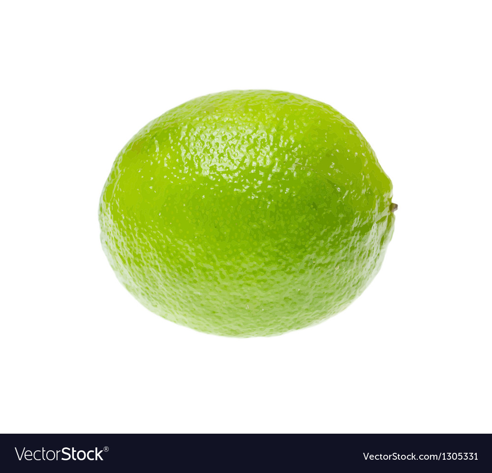 Fresh ripe lime isolated on white background vector | Price: 3 Credit (USD $3)