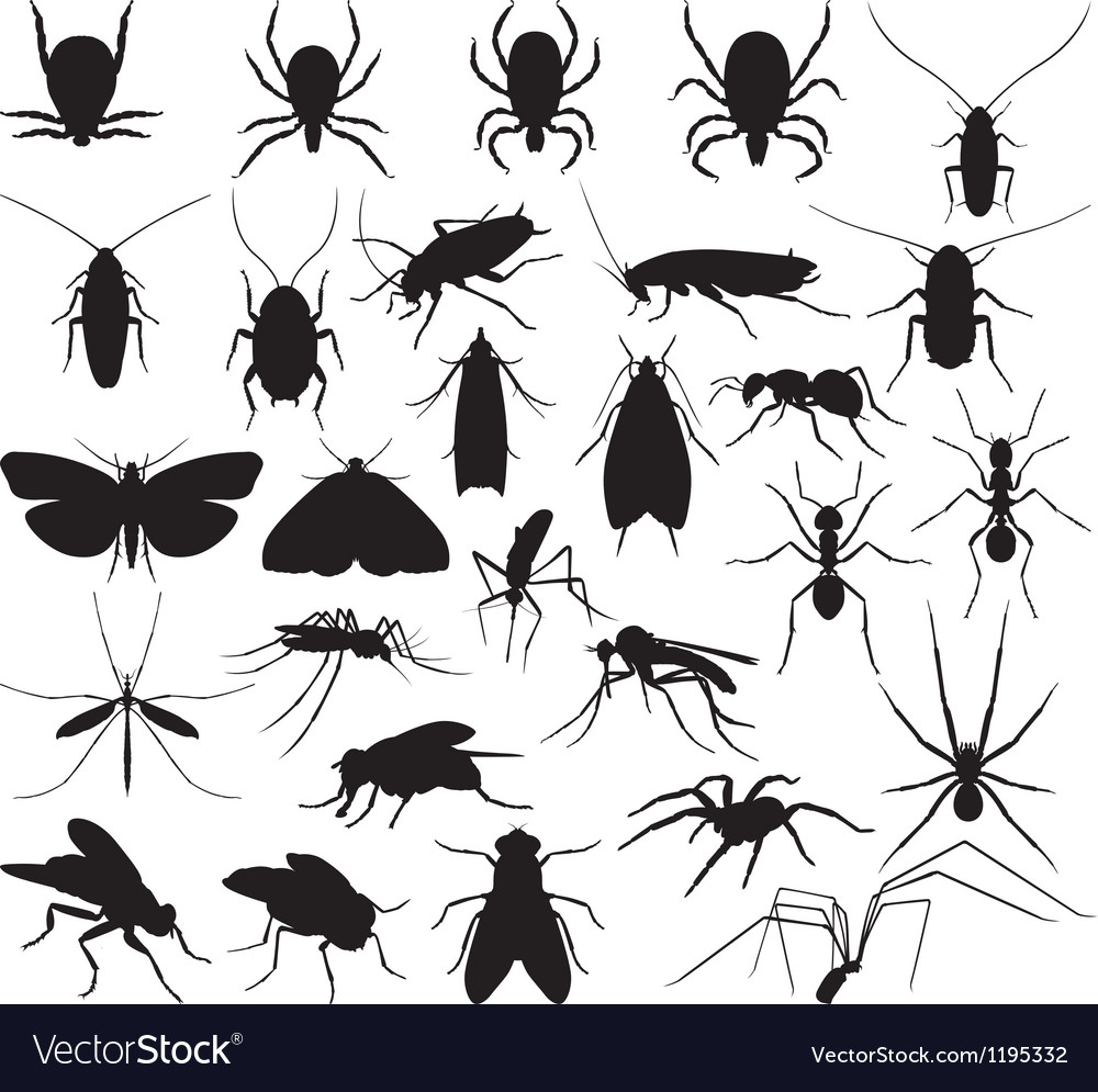 Silhouette household pests vector | Price: 1 Credit (USD $1)