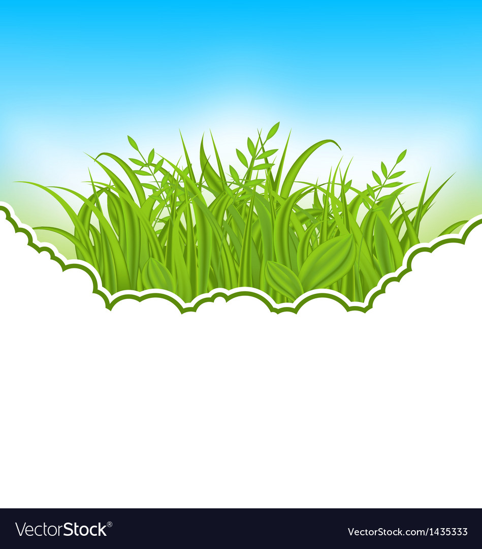Nature card with green grass vector | Price: 1 Credit (USD $1)