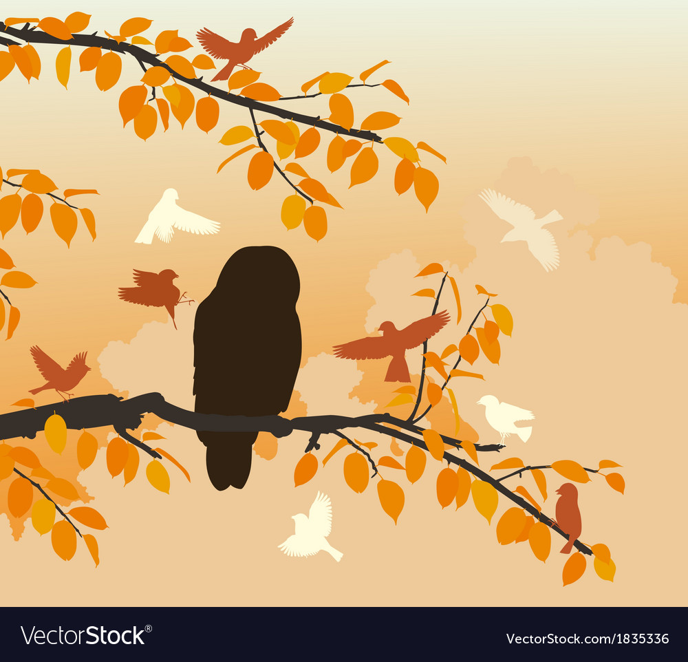 Owl mobbed vector | Price: 1 Credit (USD $1)