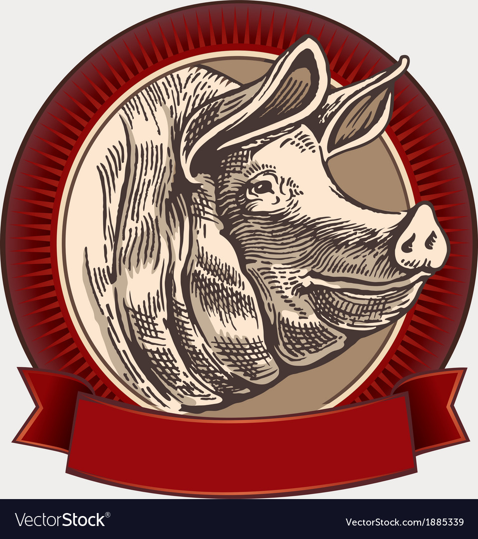 Graphical pig vector | Price: 3 Credit (USD $3)
