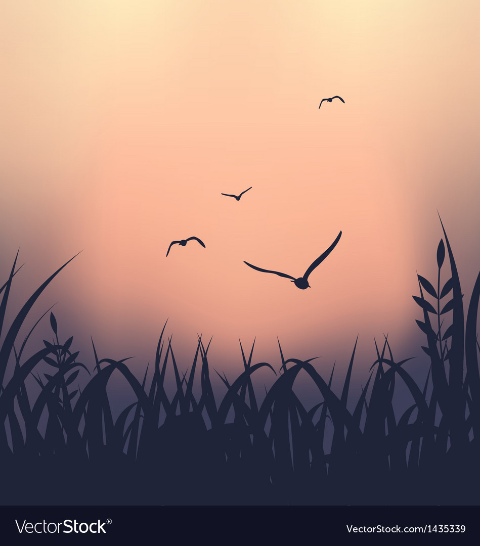 Landscape with grass and flying seagulls vector | Price: 1 Credit (USD $1)