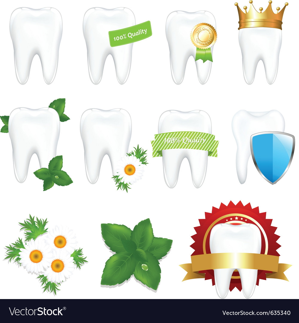 Tooths set vector | Price: 1 Credit (USD $1)