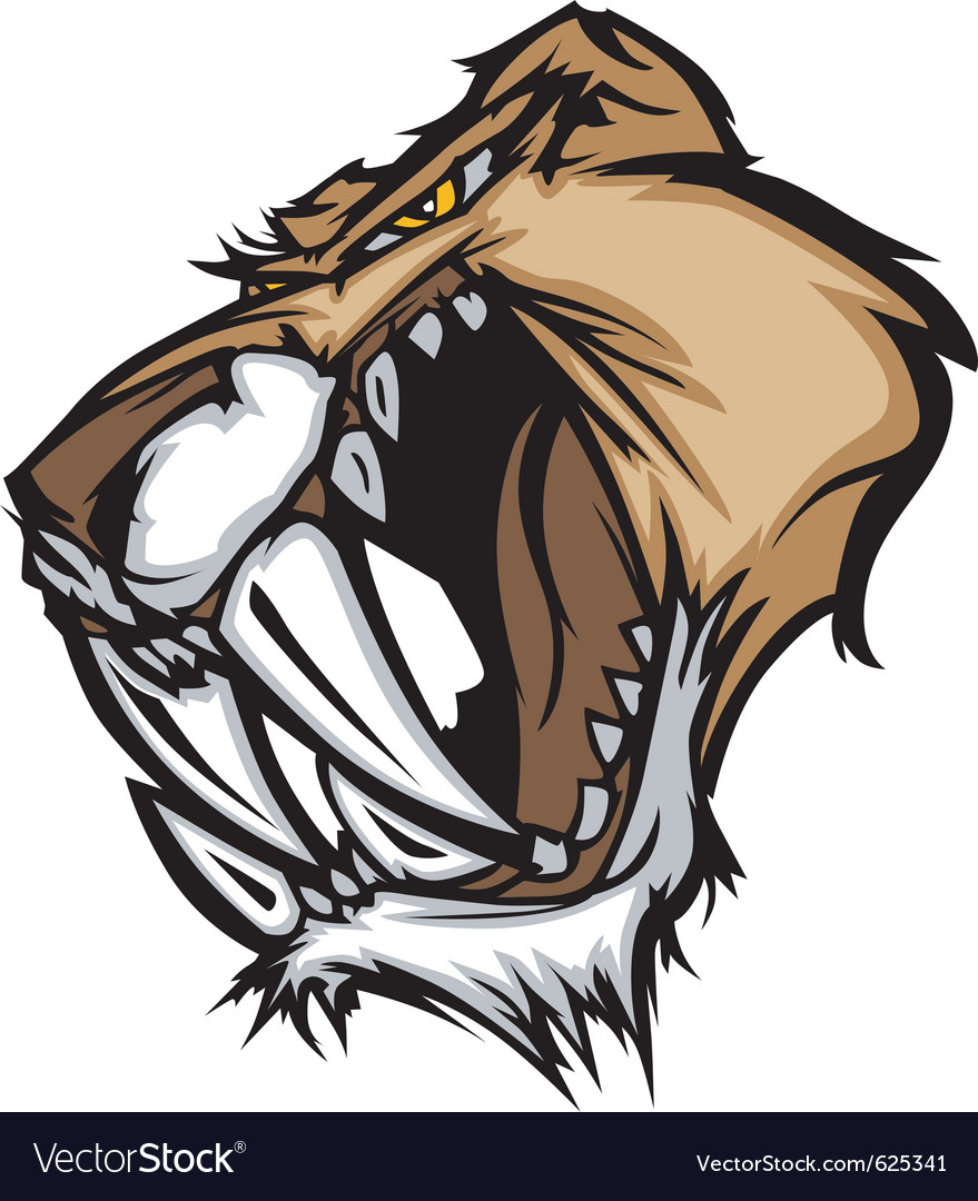 Cougar mascot head graphic vector | Price: 1 Credit (USD $1)