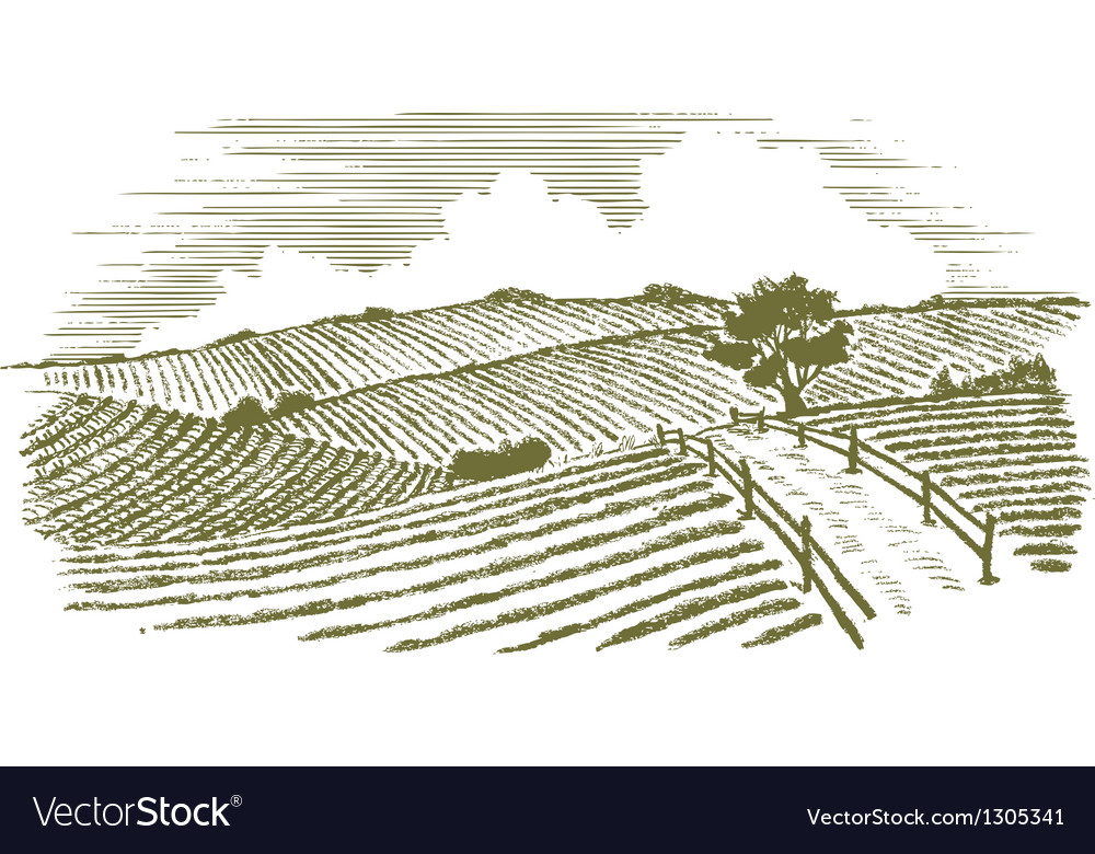Woodcut countryside vector | Price: 1 Credit (USD $1)