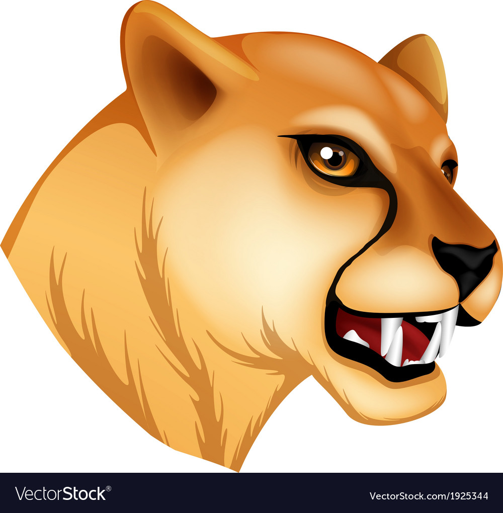 A head of a panther vector | Price: 1 Credit (USD $1)