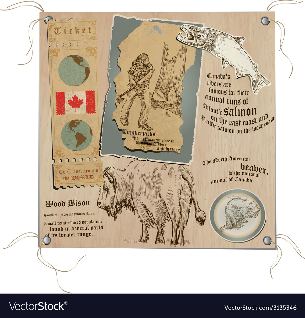 Canada - pictures of life wildlife vector | Price: 1 Credit (USD $1)