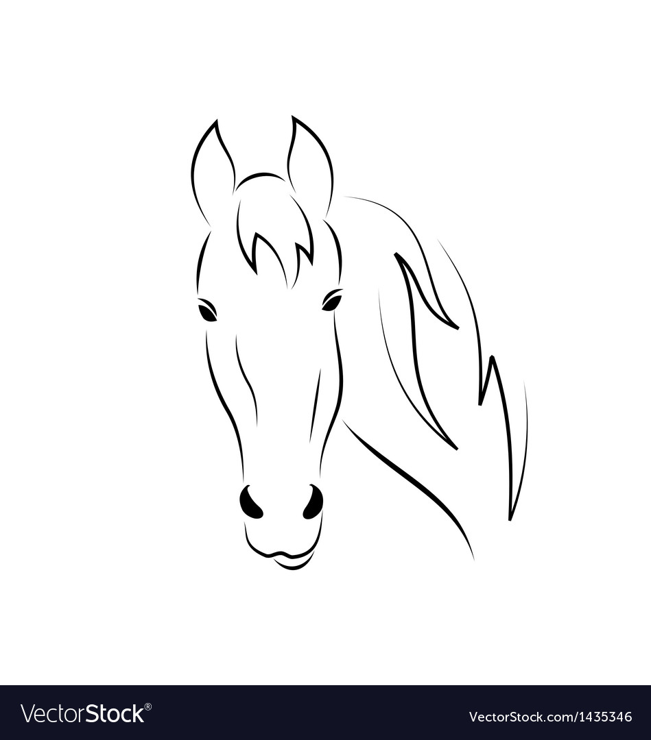 Sketch outline head horse isolated on white vector | Price: 1 Credit (USD $1)