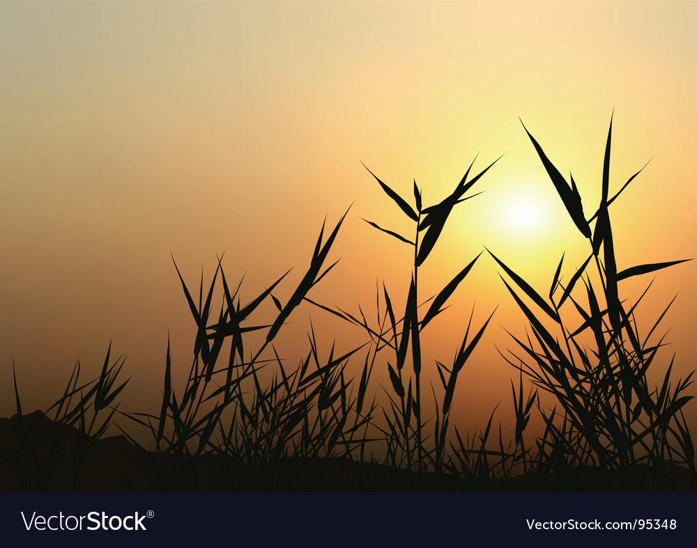 Sunrise scene vector | Price: 1 Credit (USD $1)