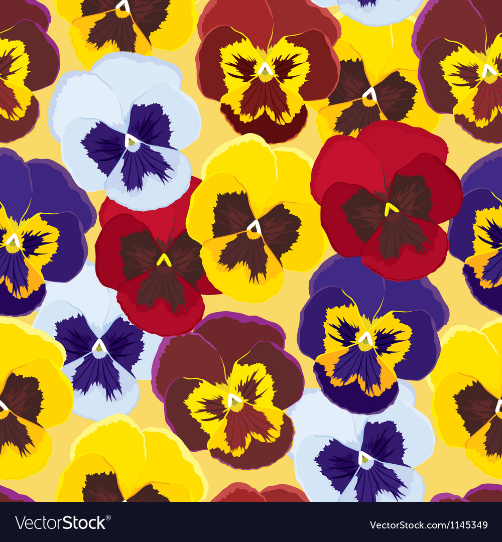 Background of pansies vector