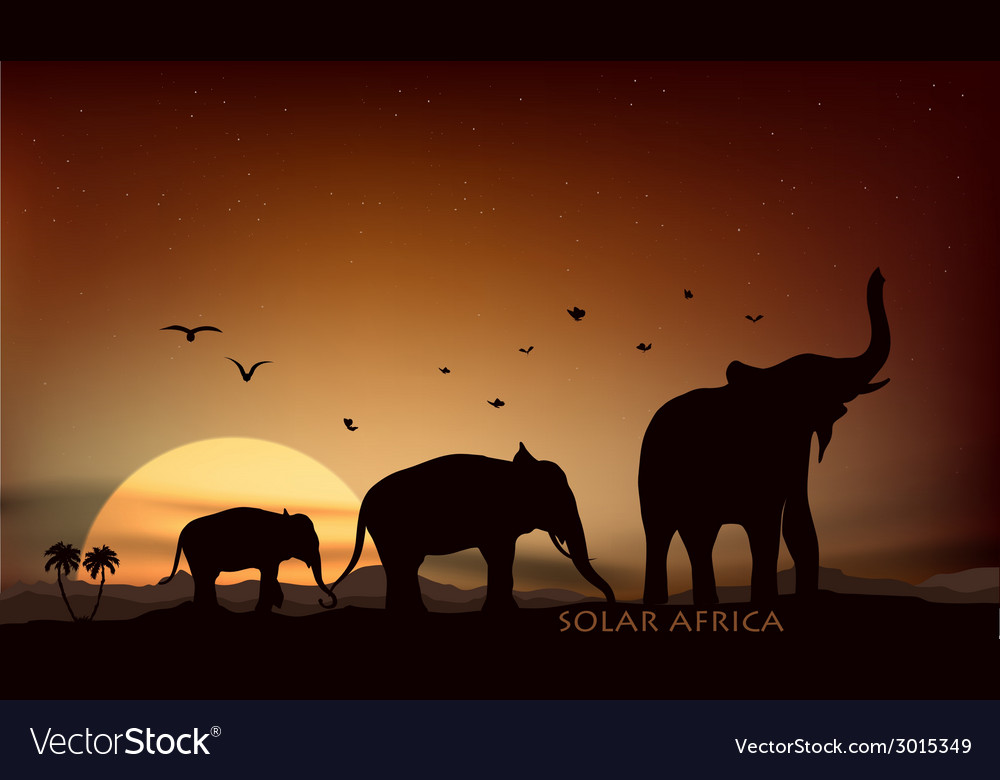 Sunrise and sunset over the savannah vector | Price: 1 Credit (USD $1)