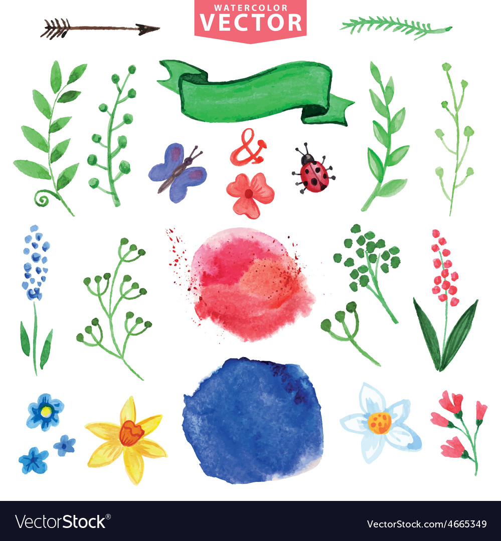 Watercolor floral decor branchesflowers set vector | Price: 1 Credit (USD $1)