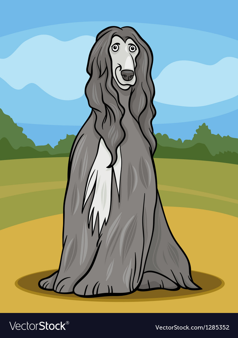 Afghan hound dog cartoon vector | Price: 1 Credit (USD $1)