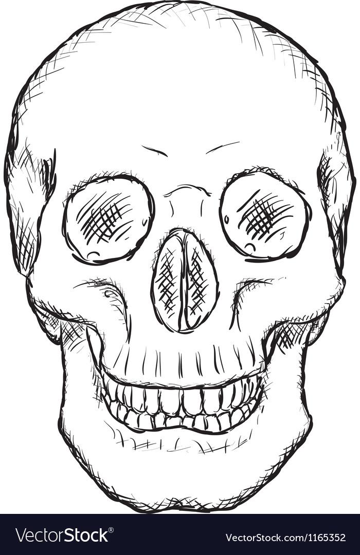 Human skull vector | Price: 1 Credit (USD $1)