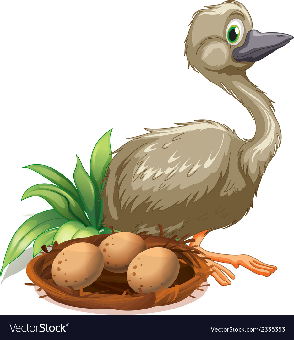 An ostrich beside the nest with eggs vector | Price: 1 Credit (USD $1)