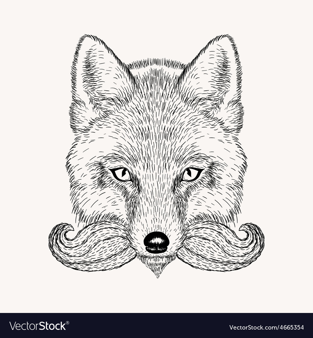 Sketch fox with a beard and moustache hand drawn vector | Price: 1 Credit (USD $1)