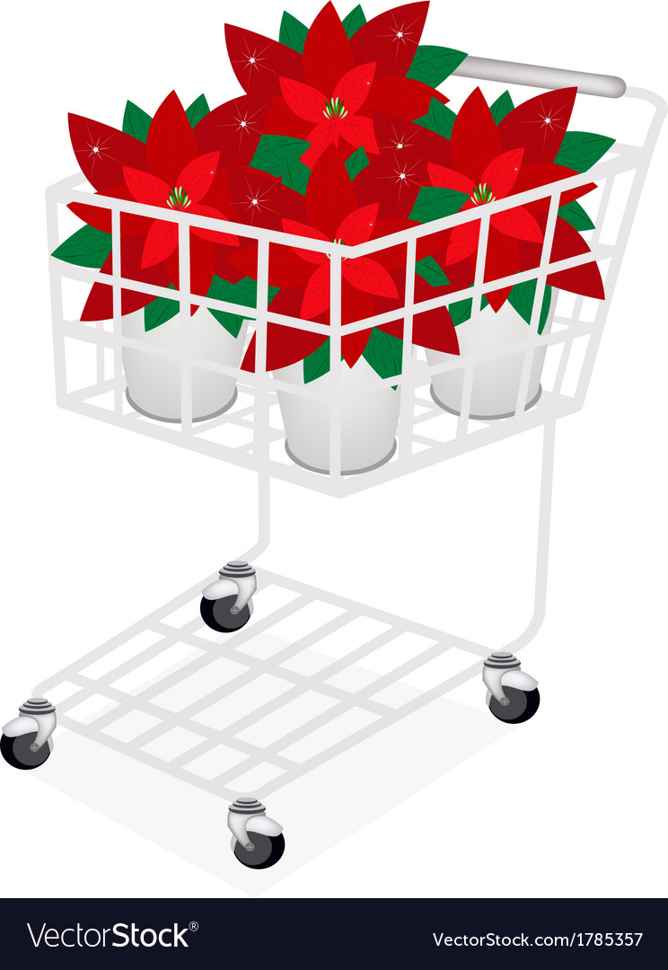 Beautiful poinsettia flower in a shopping cart vector | Price: 1 Credit (USD $1)