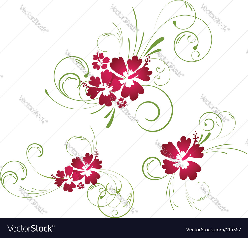 Hibiscus floral elements vector | Price: 1 Credit (USD $1)