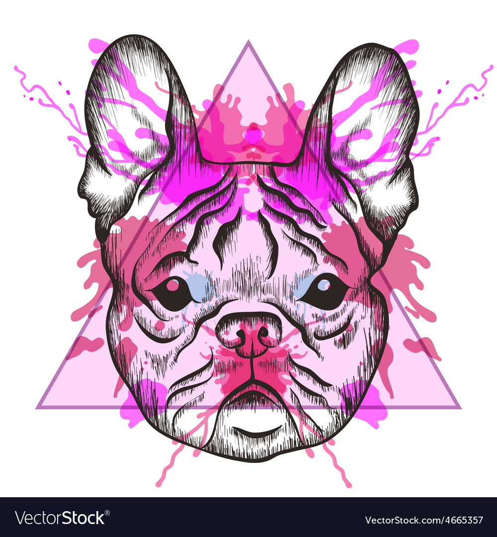 Sketch hipster french bulldog face in triangle vector | Price: 1 Credit (USD $1)
